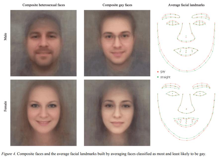 분석에 근거한 가장 동성애자일 가능성이 높은 얼굴의 구조적 특징