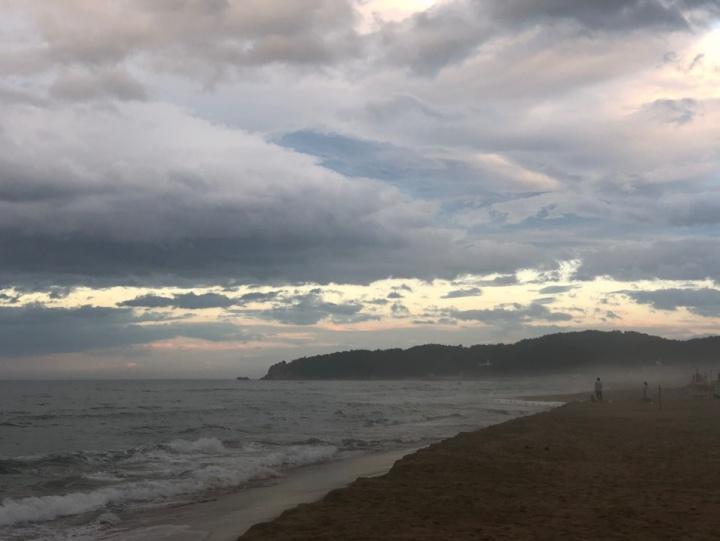 황량한 해변풍경 사진.