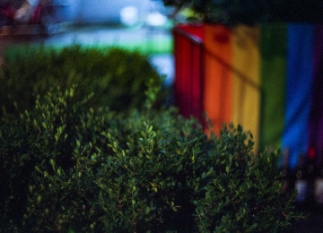 [123호][이달의 사진] 사회적 거리두기 2.5단계를 맞은 게이업소